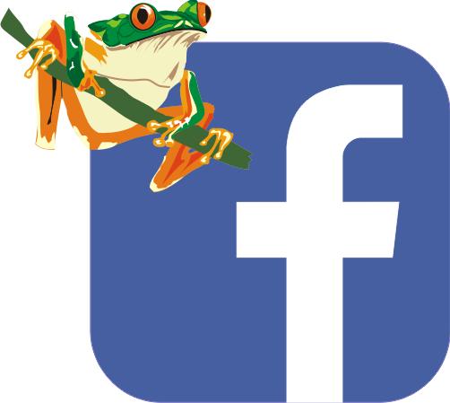 facebook Rosnička
